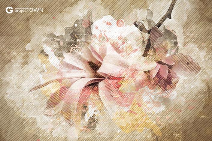 magnolia1-1