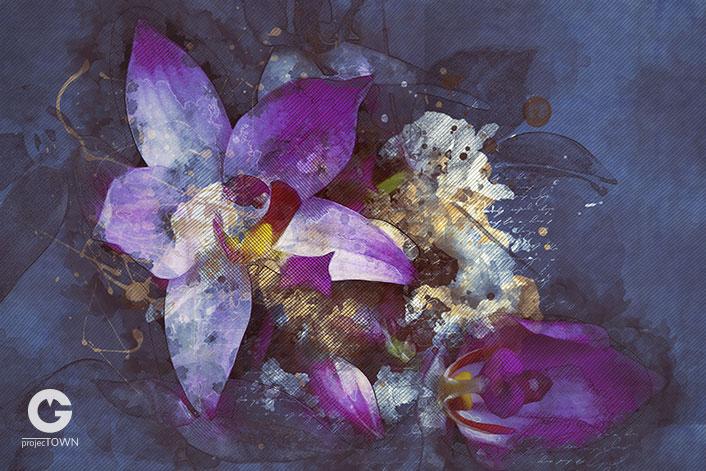 orchidea2-4