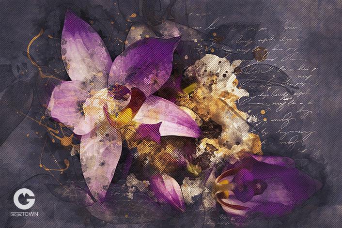 orchidea2-6