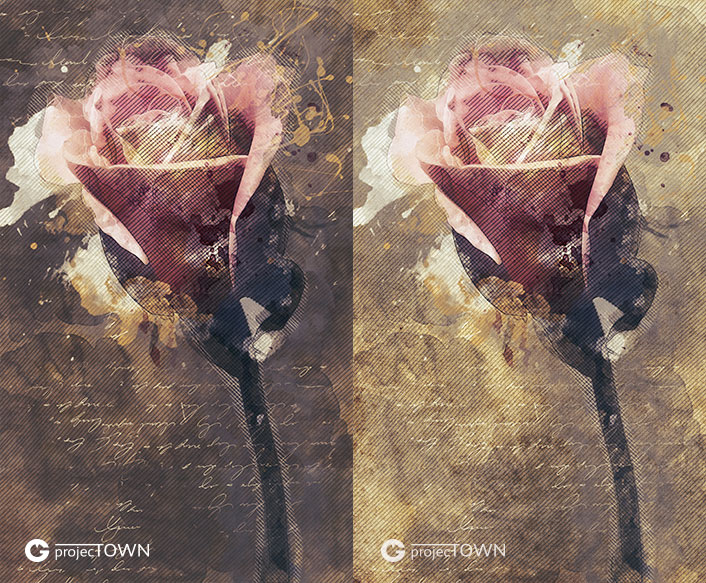 roza2-2