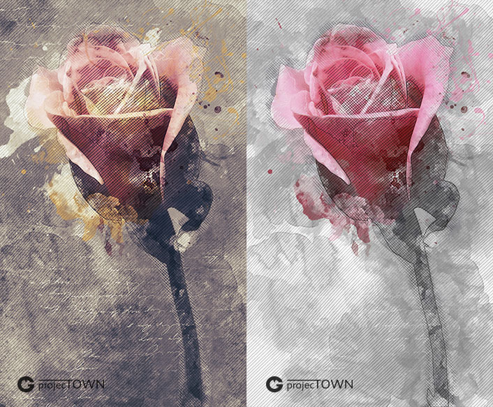 roza2-3