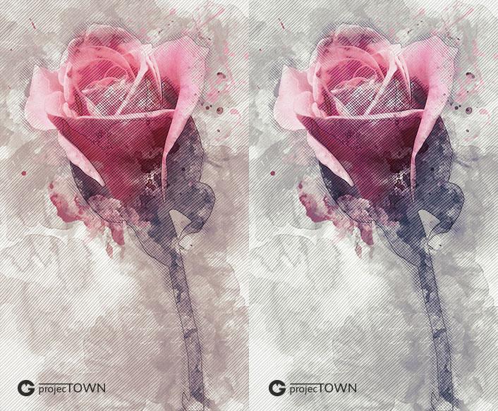 roza2-4