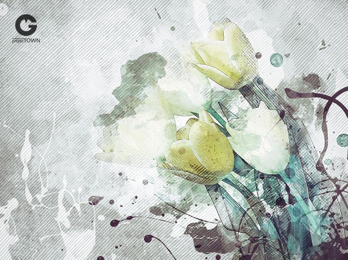 tulipany1-5